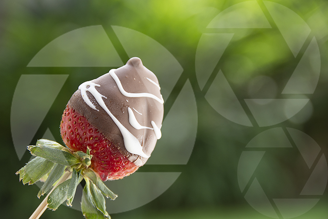 Chocolate covered strawberry on green organic background