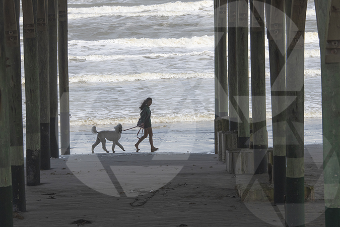 Girl walking dog on Galveston Beach